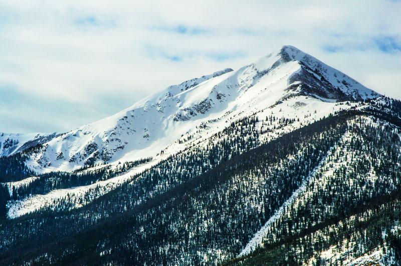 Skidåkning på snötäckt berg